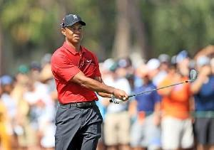 In 2018 Honda Classic Tiger Woods Is Getting Close